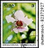 "CUBA - CIRCA 1973: A Stamp printed in CUBA shows image of a Vanda Miss Joaquim, from the series ""Tropical Orchids"", circa 1973 - stock photo"