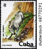 CUBA - CIRCA 1981: A Stamp printed in CUBA shows the image of the Horse, value 8c, series, circa 1981 - stock photo