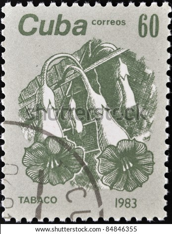 """CUBA - CIRCA 1983: A stamp printed in Cuba shows the Tobacco, from the series """"Flowers"""", circa 1983 - stock photo"""