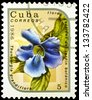 "CUBA - CIRCA 1986: A stamp printed in Cuba shows Thunbergia grandiflora Flower, with the same inscription, from the series ""Exotic Flowers from botanical garden"", circa 1986 - stock photo"