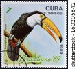 CUBA - CIRCA 1989: A stamp printed in the Cuba, shows the exotic bird (toucan), ramphastos toco, circa 1989  - stock photo