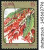 CUBA - CIRCA 1984: post stamp printed in Cuba shows image of triplaris surinamensis from Caribbean flowers series, Scott catalog 2689 A730 5c, circa 1984 - stock photo