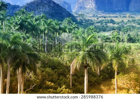 Cuba - famous mogotes karstic landscape in Vinales National Park. Filtered style. - stock photo