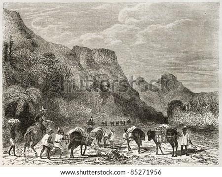 Cuban landscape, old illustration. Created by Huet after Mialhe, published on Le Tour du Monde, Paris, 1860 - stock photo