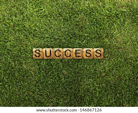 cubes crossword success on grass - stock photo