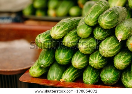 Cucumber. Cucumbers. Growing Organic Cucumbers. Pile Of Ripe Cucumbers Outdoor On Market