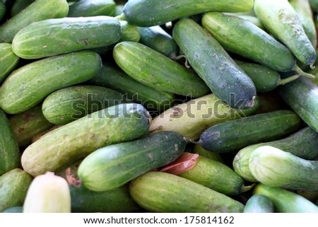 Cucumber in the market