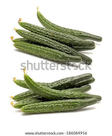 okra pods pencil drawing isolated on stock illustration