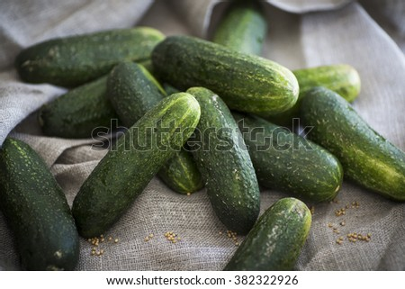 Cucumbers as an ingredient for pickles - stock photo