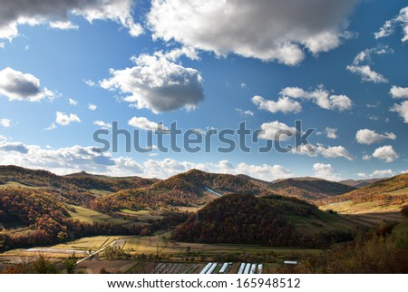 cultivated field and colorful tree in hill