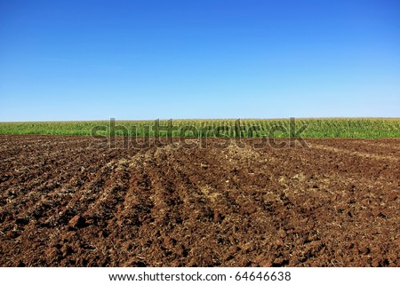 Cultivated field background.