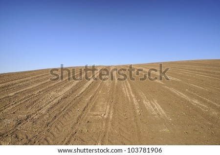 Cultivated field on the slope
