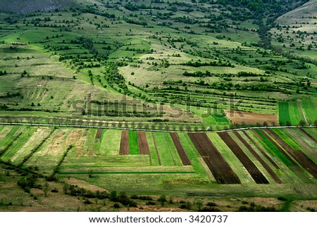 Cultivated fields - stock photo