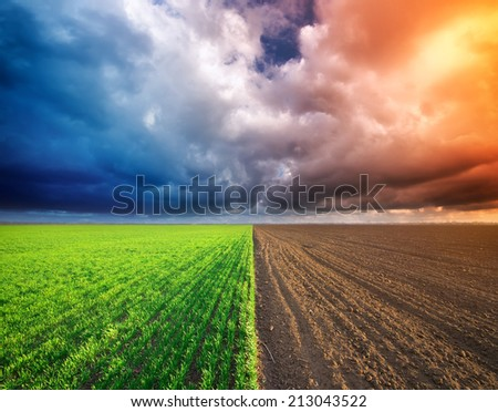 Cultivated green meadow and heavy sky clouds. Rural scene. - stock photo