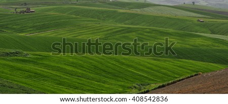 Cultivated hills of spring Molise, Campobasso Italy