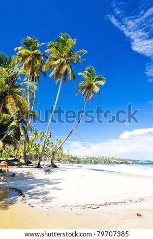 Cumana Bay, Trinidad - stock photo