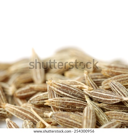 cumin seeds on white background - stock photo