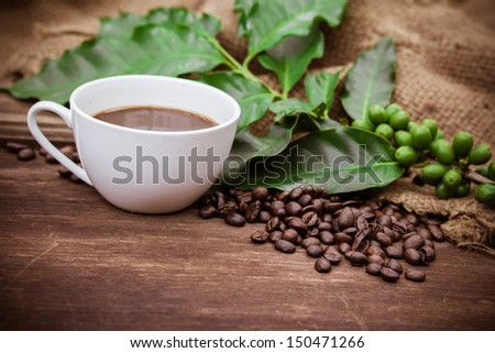 Cup coffee and beans on wood background - stock photo