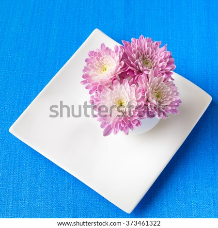 Cup full of pink  mum flowers on blue canvas background, selective focus - stock photo