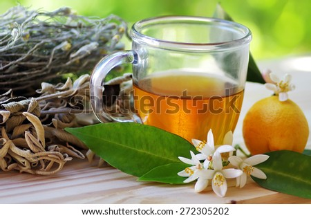cup of herbal tea and lemon on table - stock photo