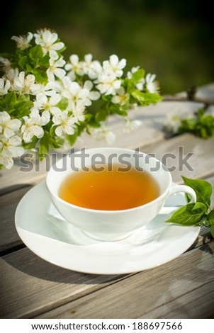 Cup of herbal tea, artistic - art photo