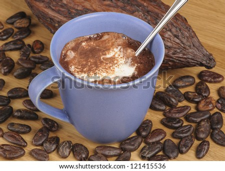 Cup of hot chocolate with whipped cream surrounded by cocoa beans and fruit - stock photo