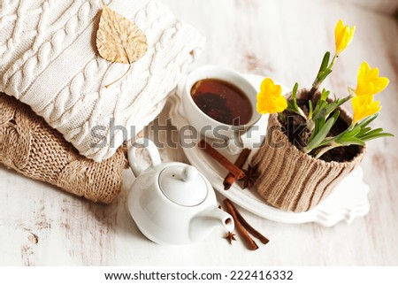 Cup of hot drink, knitting clothes, cinnamon and flowers. winter mood - stock photo