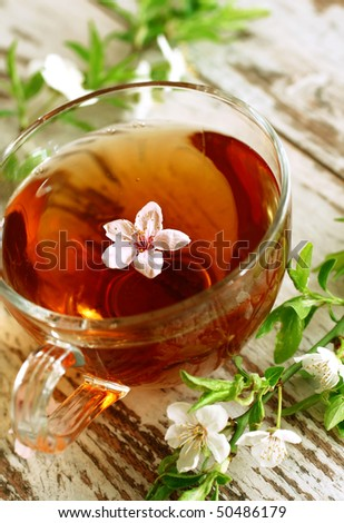 cup of tea and spring branch on wooden - stock photo