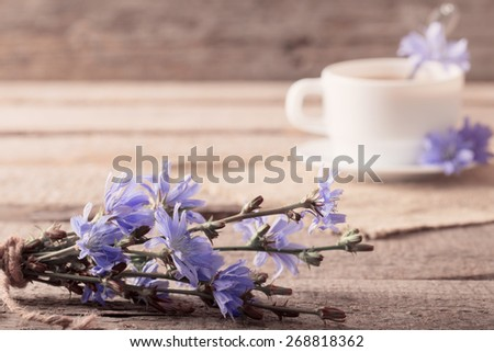 Cup of tea with chicory on wooden background - stock photo