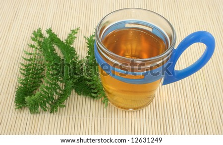 cup of tea with fresh plant