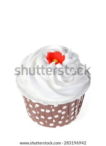 Cupcake isolate on white