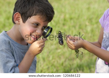 Curious Child Looking At Beetle Through Magnifying Glass Outdoor - stock photo