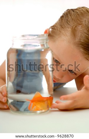 Curious young boy toddler looking and learning about goldfish in jar of water