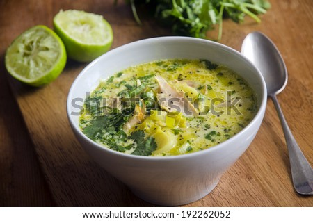 Curried chicken and coconut soup - stock photo