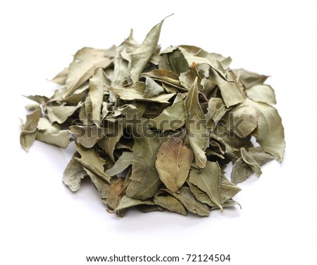 curry leaf, indian spice