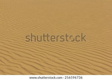 curved pattern on sand - stock photo