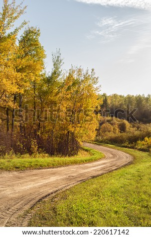 Curving dirt road around grove trees in autumn