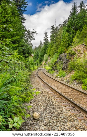 Curving Railway through a Forest - stock photo