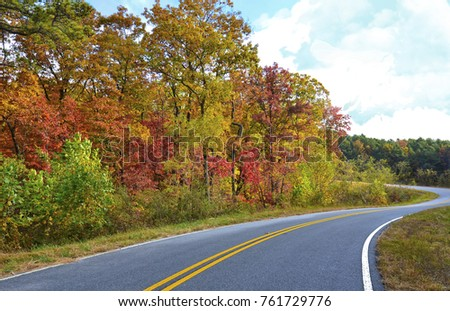 Curving Road with Colors of Fall