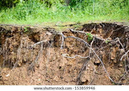cut of soil - stock photo