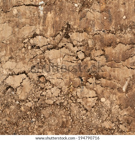 Cut of the earth soil fragment as a background texture - stock photo