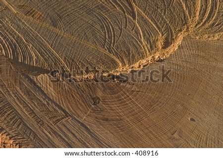 Cut wood - stock photo
