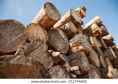 Cut wood in the form of logs stacked woodpile - stock photo