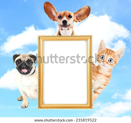 Cute and funny pets with frame on sky background - stock photo