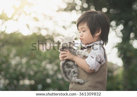 Cute Asian boy  holding american short hair kitten with sunshine in the park - stock photo