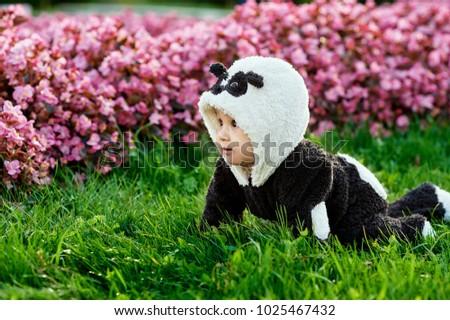 cute baby boy wearing panda bear stock photo edit now 1025467432