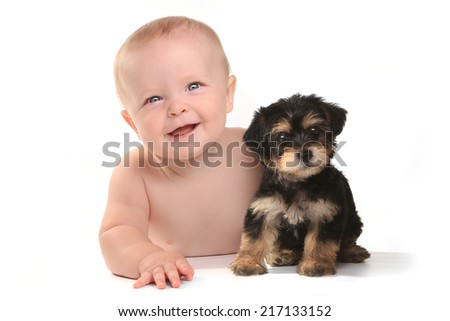 Cute Baby Boy With His Pet Teacup Yorkie Puppy - stock photo