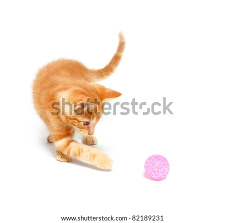 Cute baby cat playing with a ball on white background - stock photo