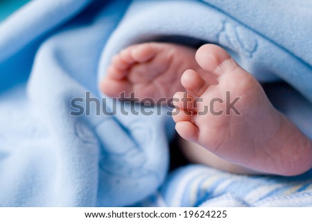 cute baby feet - stock photo