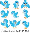 Cute blue bird cartoon collection set - stock photo